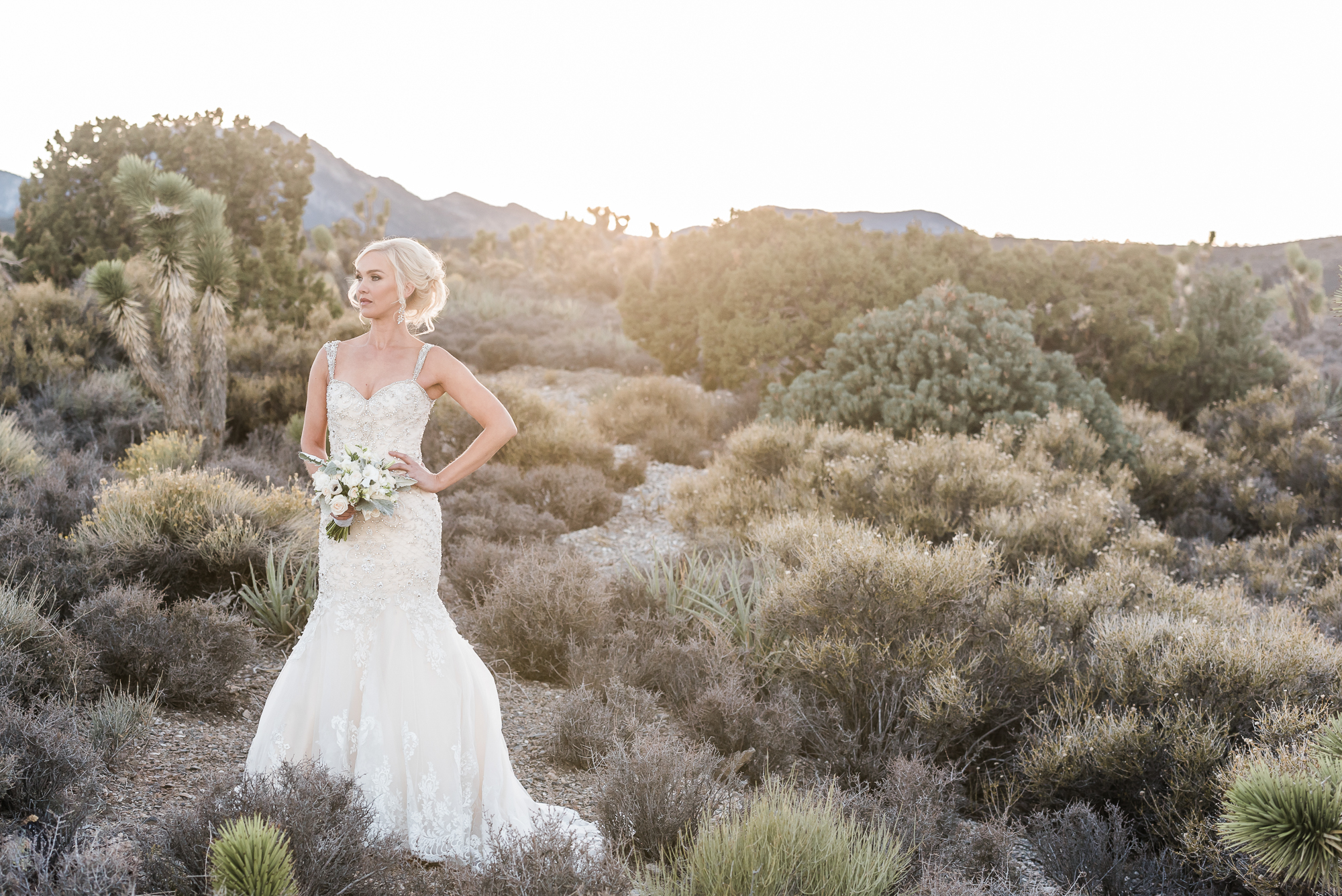 Kristen Marie Weddings + Portraits | Mt. Charleston Wedding